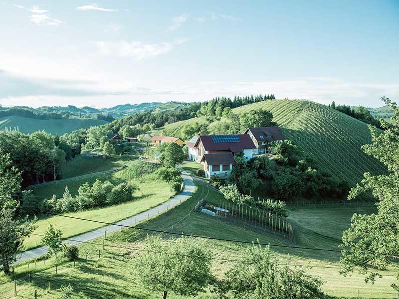 Südsteiermark – Urlaub für Genießer